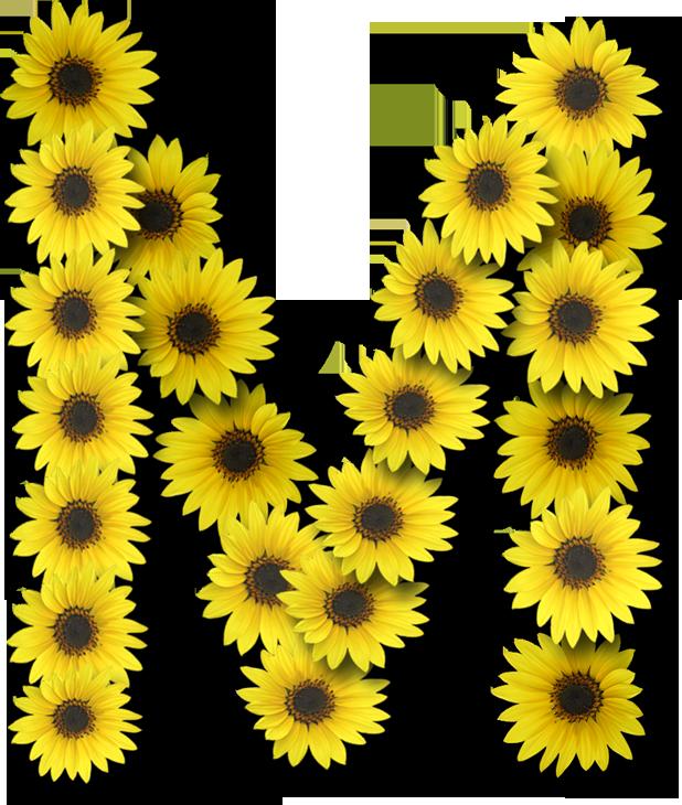 Toddler clipart alphabet. Alfabeto sunflowers m the