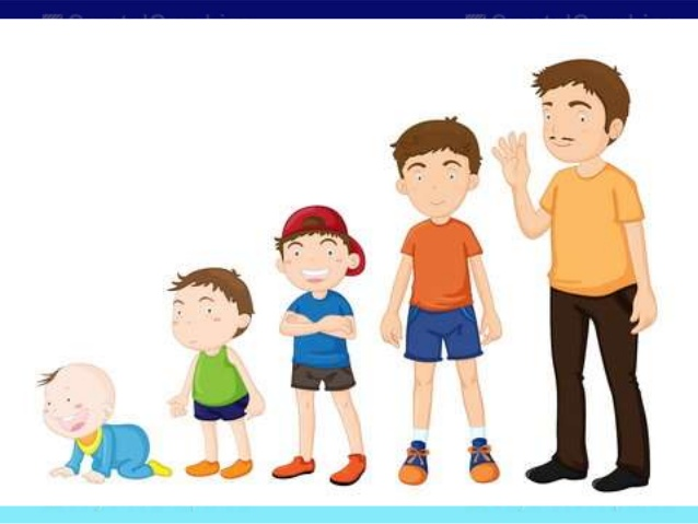 Toddler clipart child adolescent development. Basic concepts in and