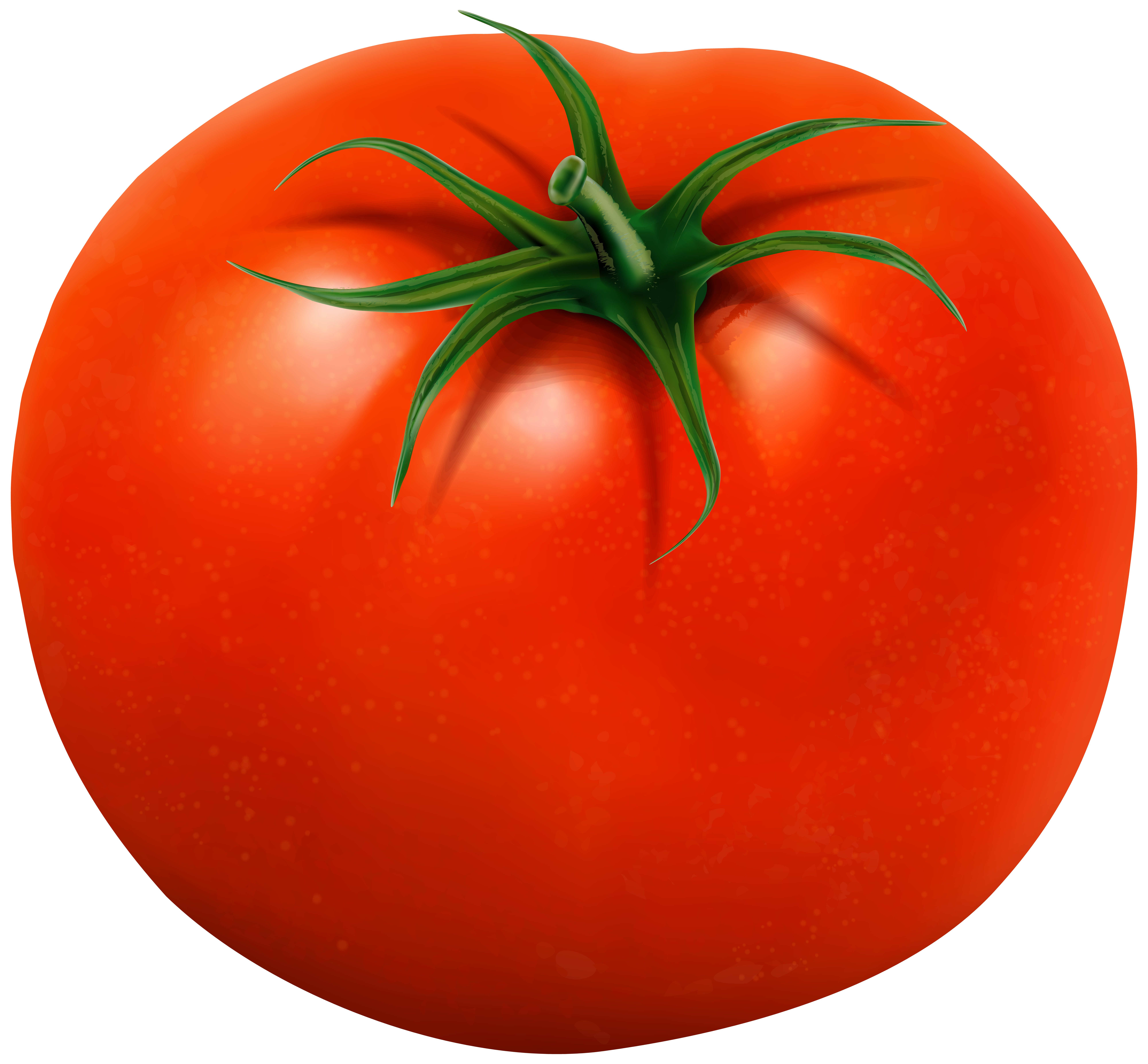 Tomato transparent clip art. Tomatoes clipart two