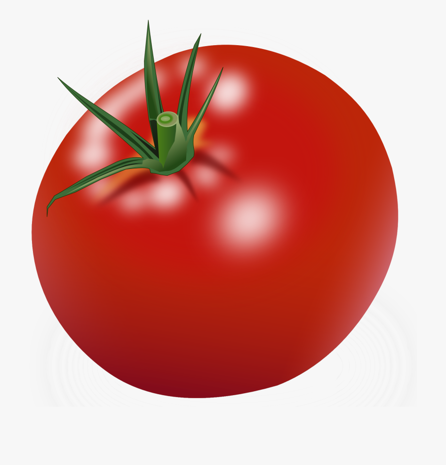 Tomatoes clipart. Red tomato free