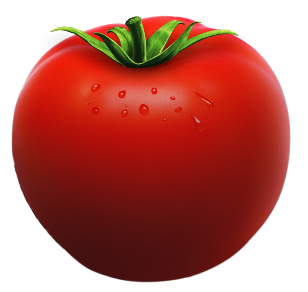 Tomatoes clipart. Free tomato cliparts download