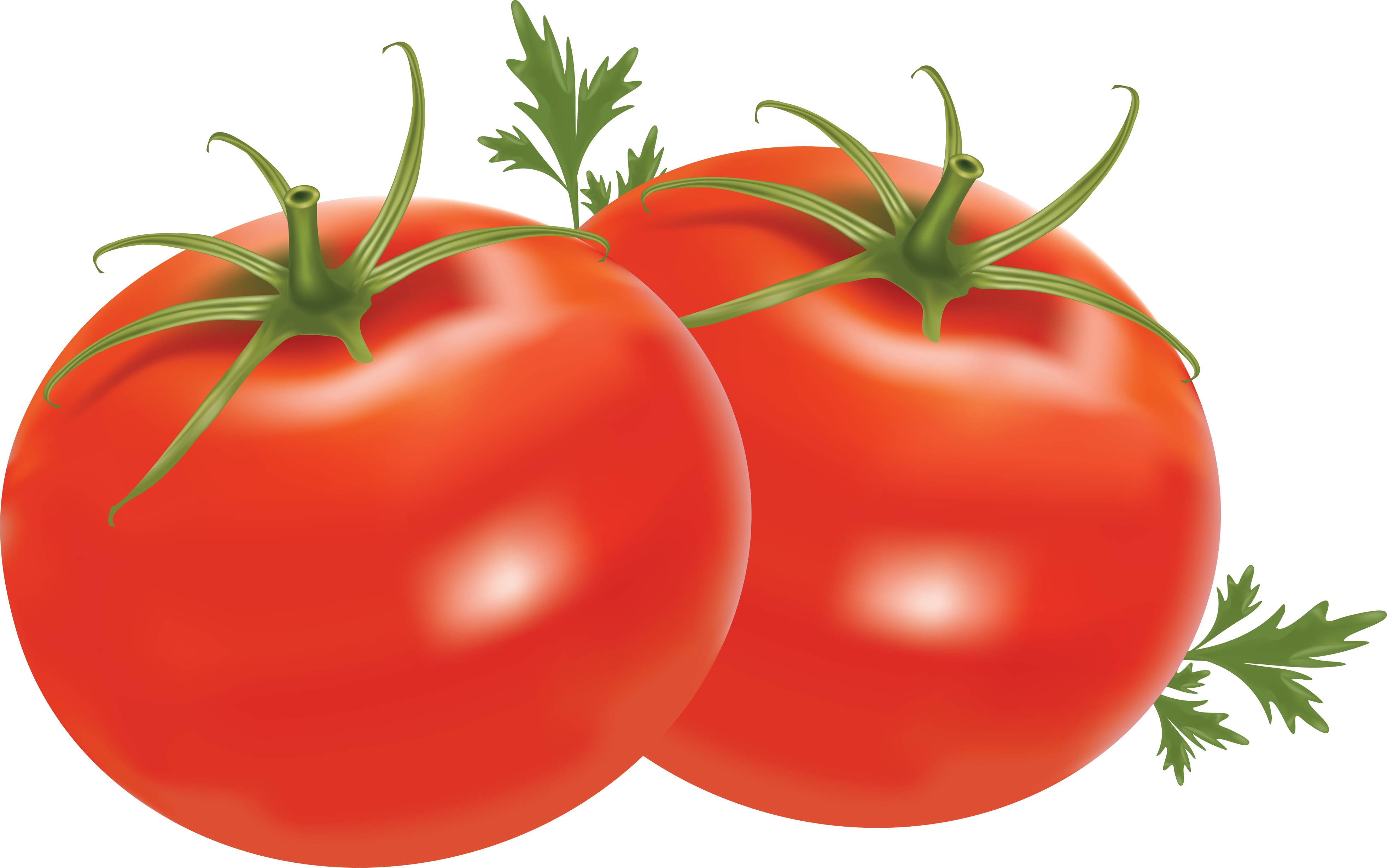 Hearts clipart fruit. Tomatoes clip art free