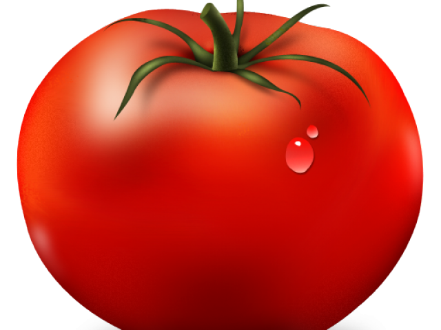 Tomatoes clipart animated. Picture frog free download