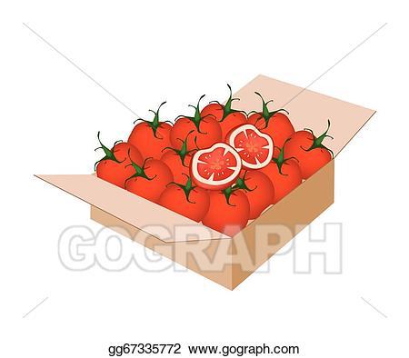 Tomatoes clipart box. Clip art vector fresh