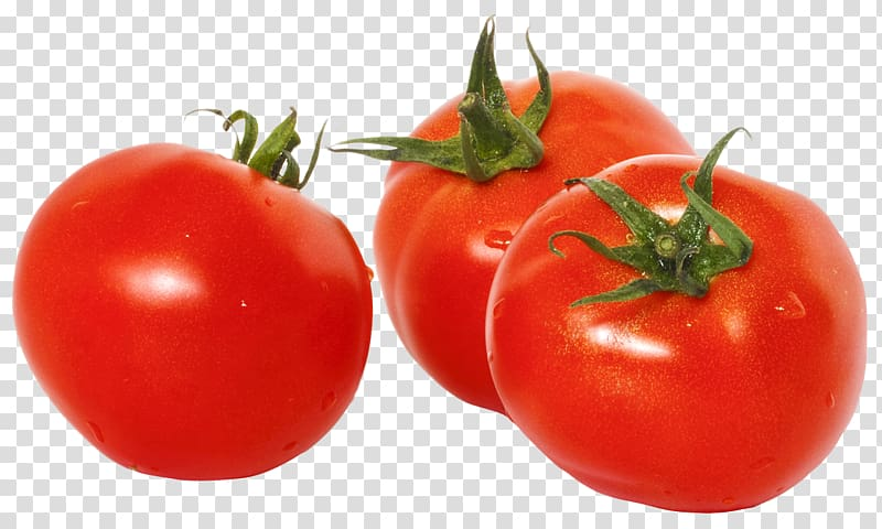 Three red art tomato. Tomatoes clipart buah