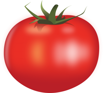 Tomatoes clipart clear background. Download tomato free png