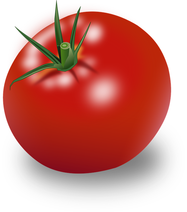 Tomatoes clipart clear background. Tomato png images transparent