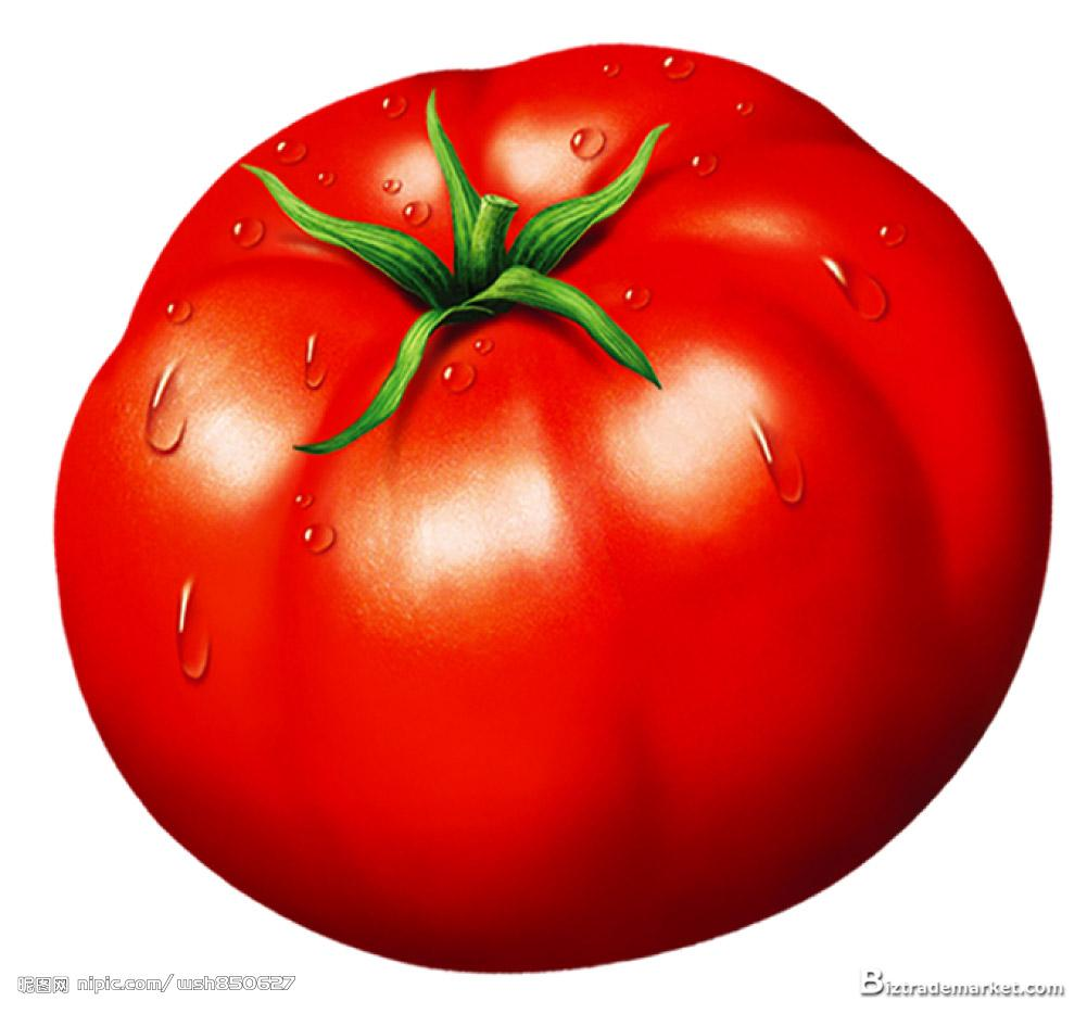 Free download clip art. Tomatoes clipart colour