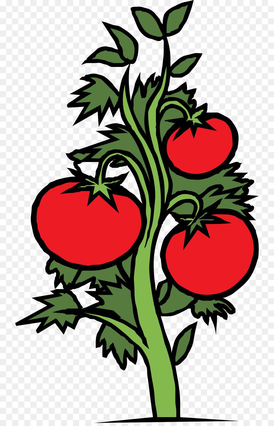 Tomatoes clipart eggplant plant. Floral flower background leaf