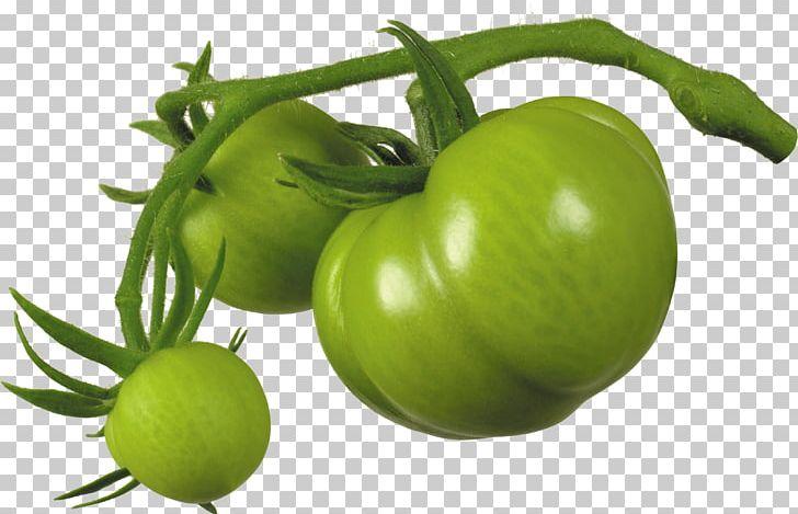 Juice cherry fried italian. Tomatoes clipart green tomato