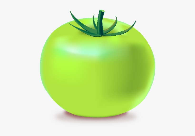 Tomatoes clipart green tomato. Icon png free