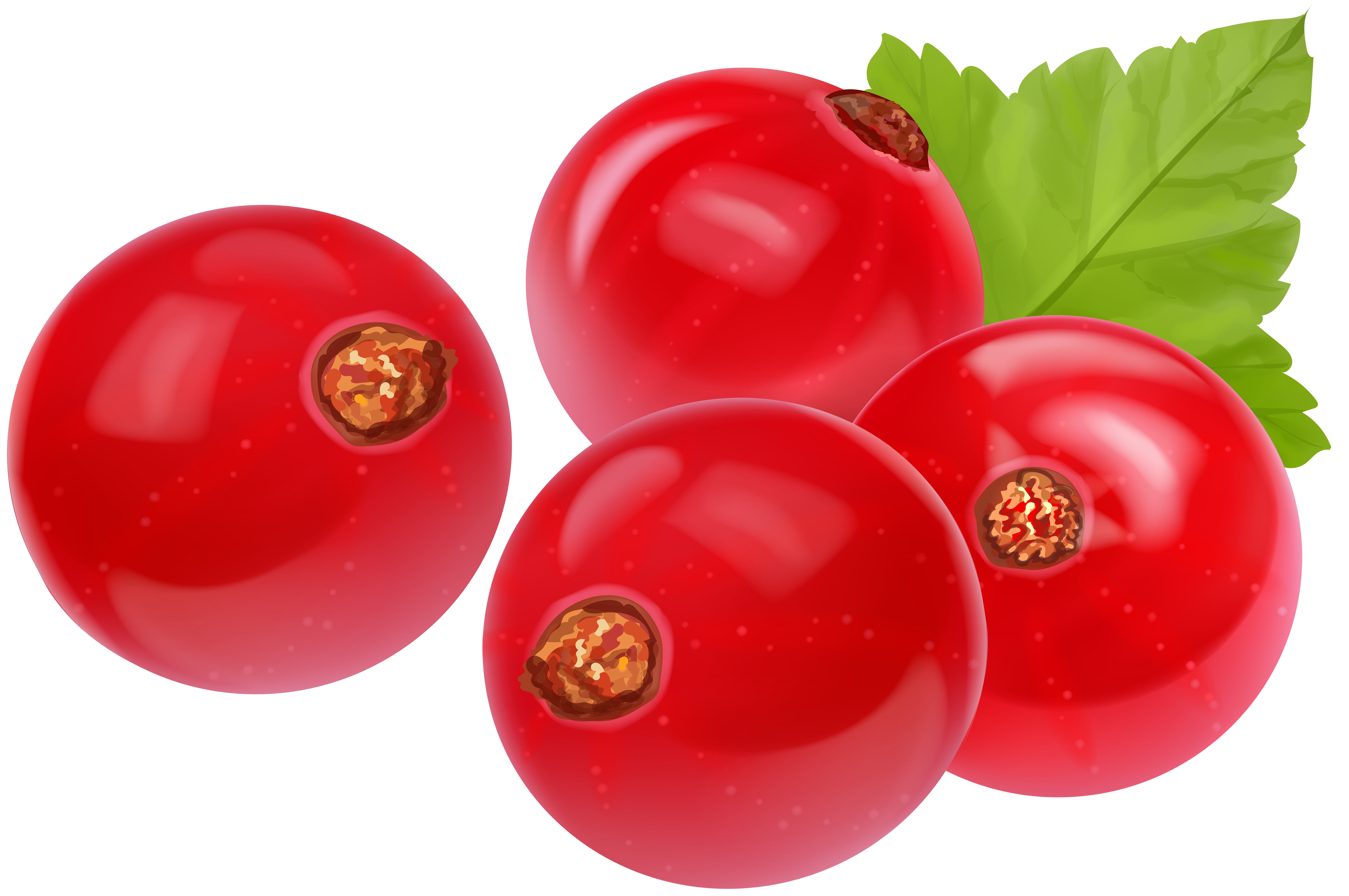 Tomatoes clipart happy tomato. Red currant transparent clip