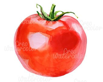 Tomatoes clipart items. Red tomato etsy
