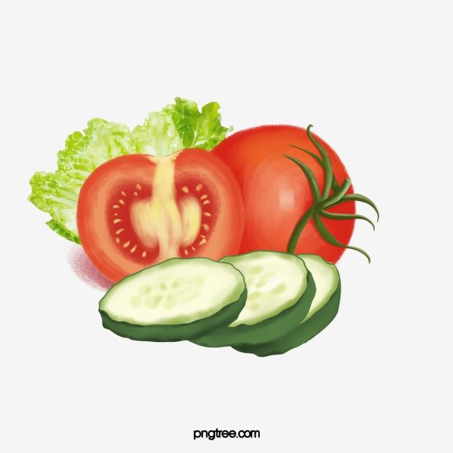 Tomatoes clipart lettuce tomato. Cucumber celery