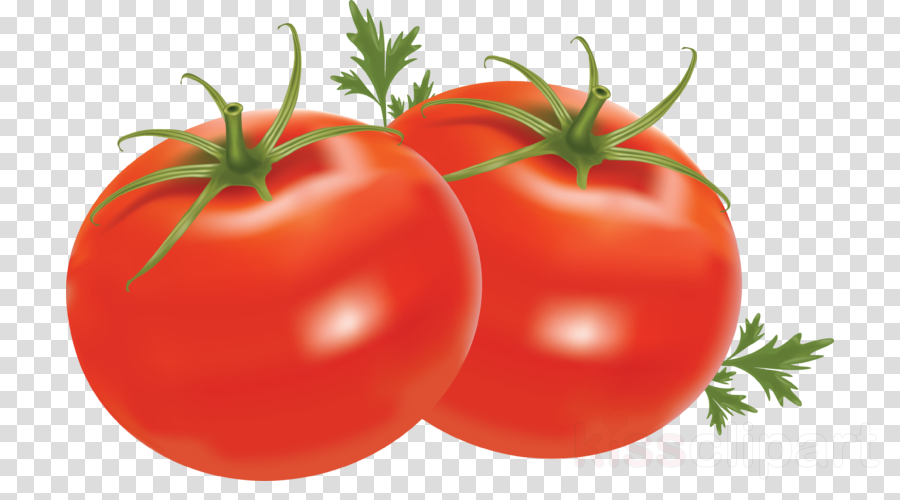 Tomato cartoon vegetable food. Tomatoes clipart local
