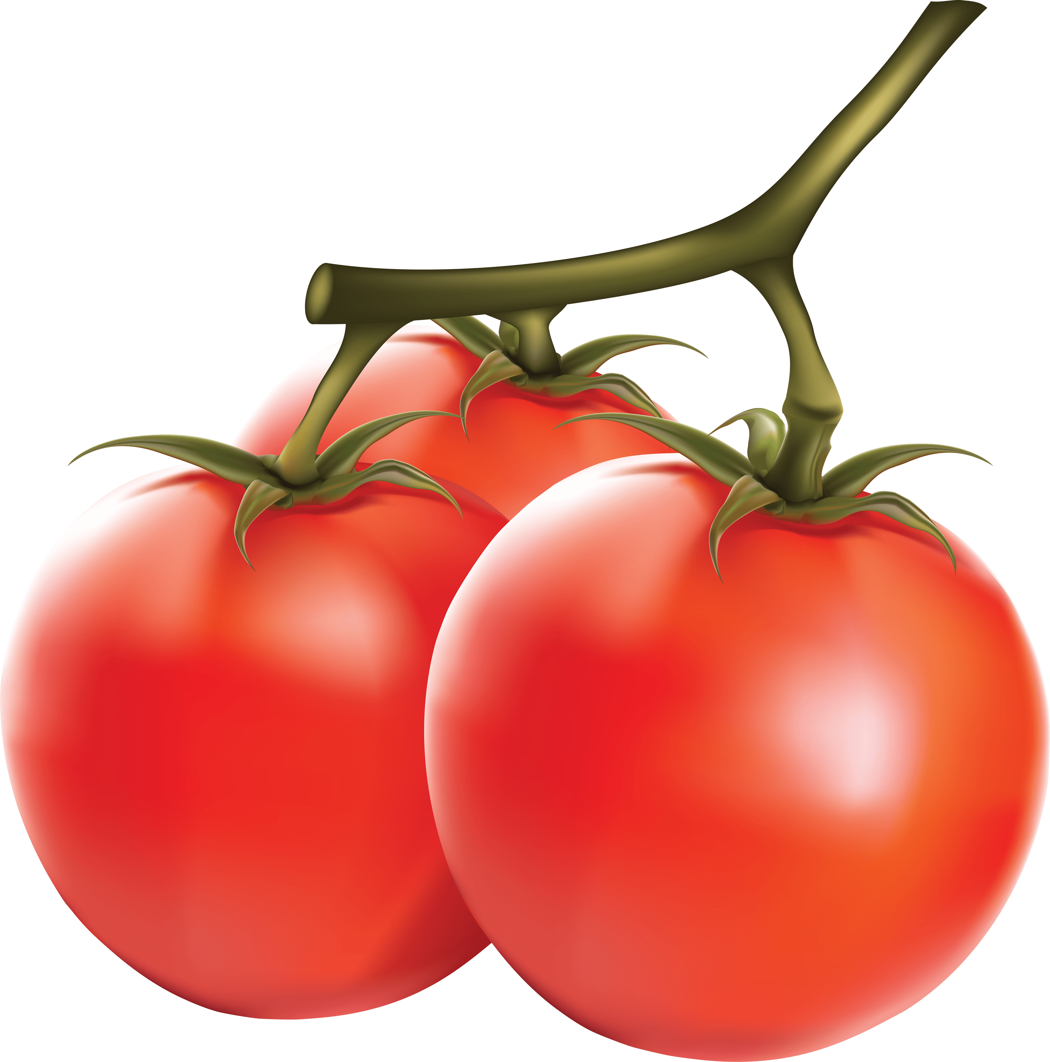 Tomatoes clipart local. Download tomato free png
