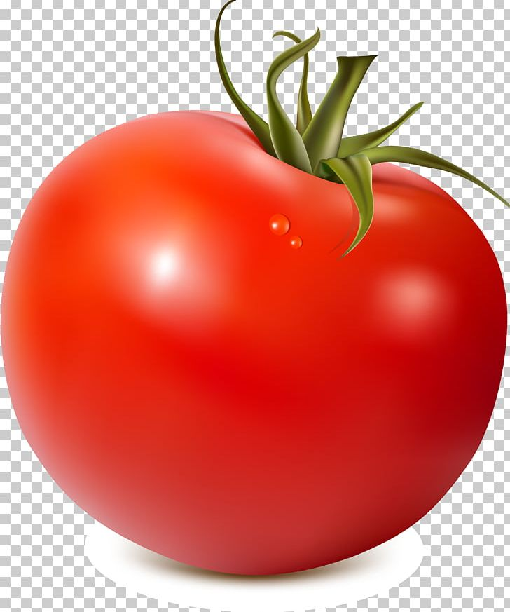 Tomatoes clipart local. Tomato soup juice png