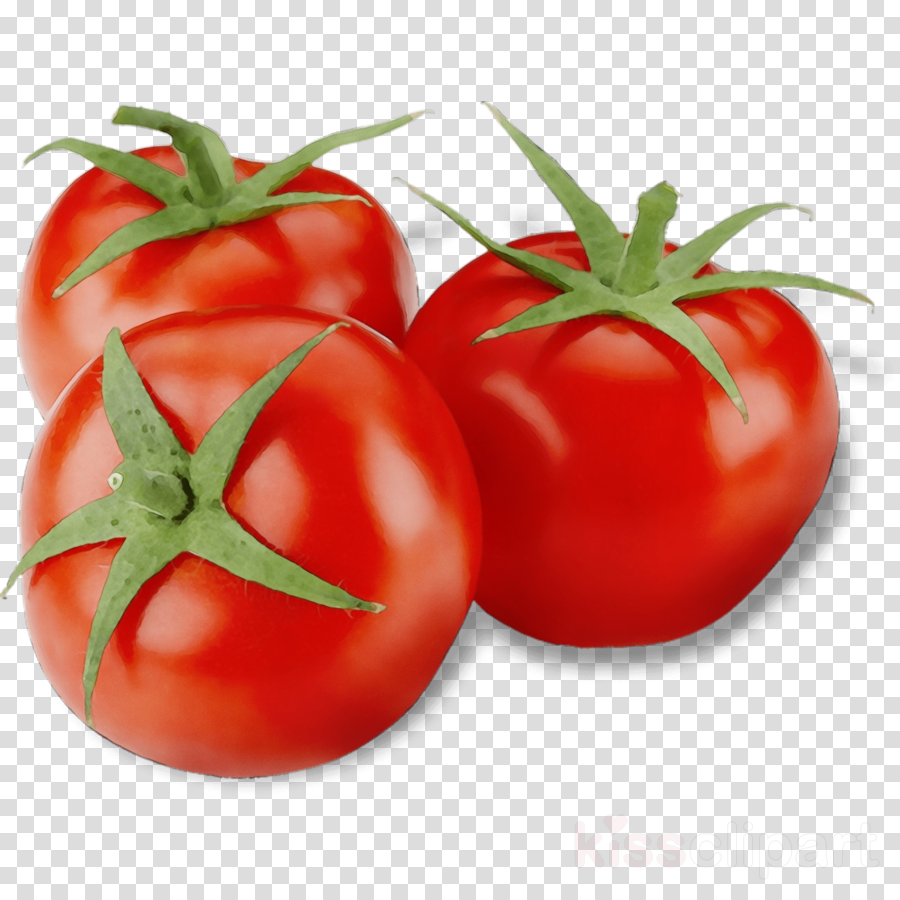 Tomato natural foods vegetable. Tomatoes clipart local