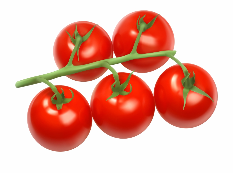 Tomatoes clipart local. Branch png