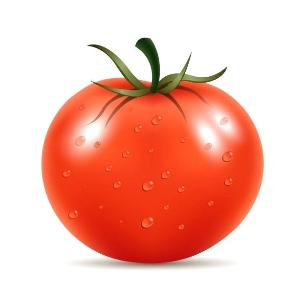 Tomatoes clipart one. Collection of tomato free