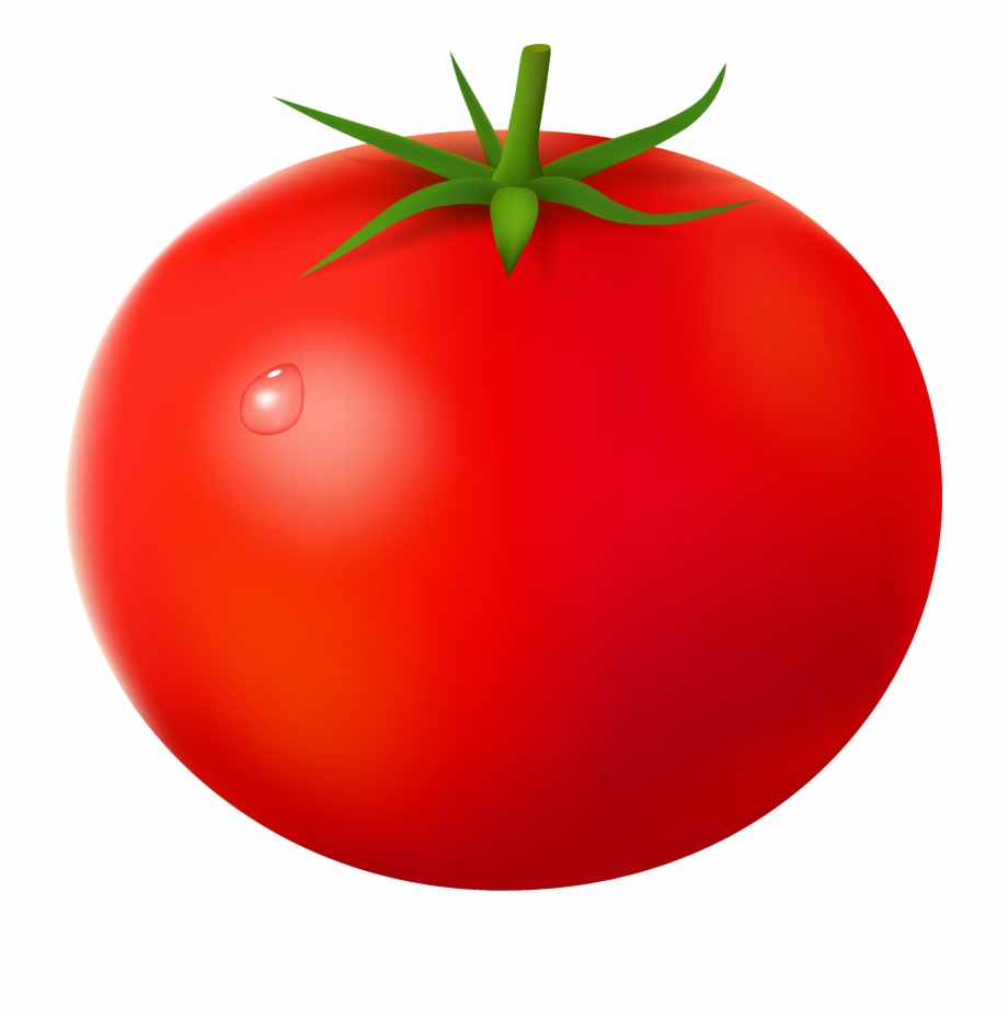 Tomatoes clipart one. Tomato no background pngtube