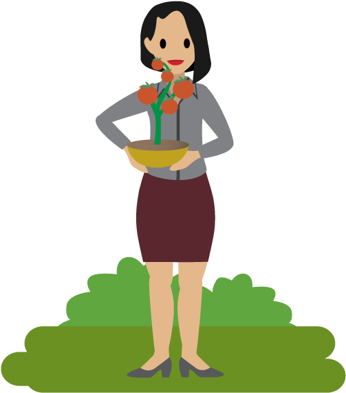 A holding tomato plant. Tomatoes clipart person
