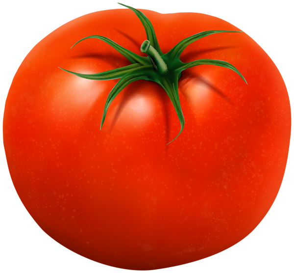 Gallery free pictures . Tomatoes clipart printable