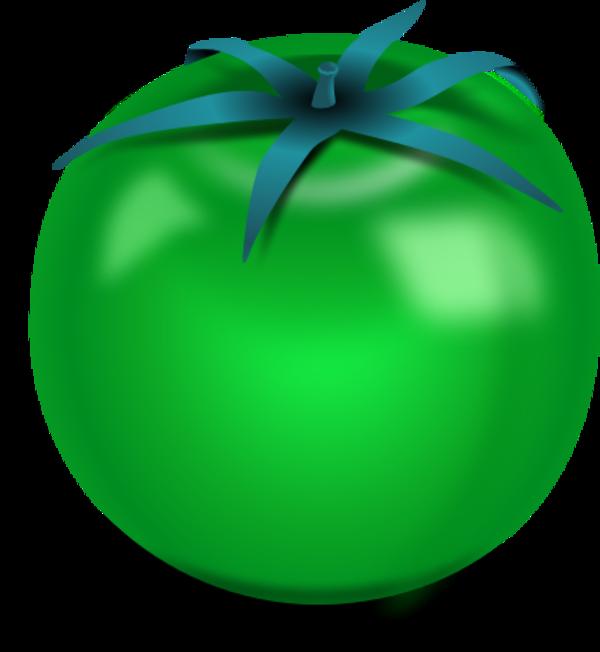 Tomatoes clipart printable. Fresh tomato vector clip