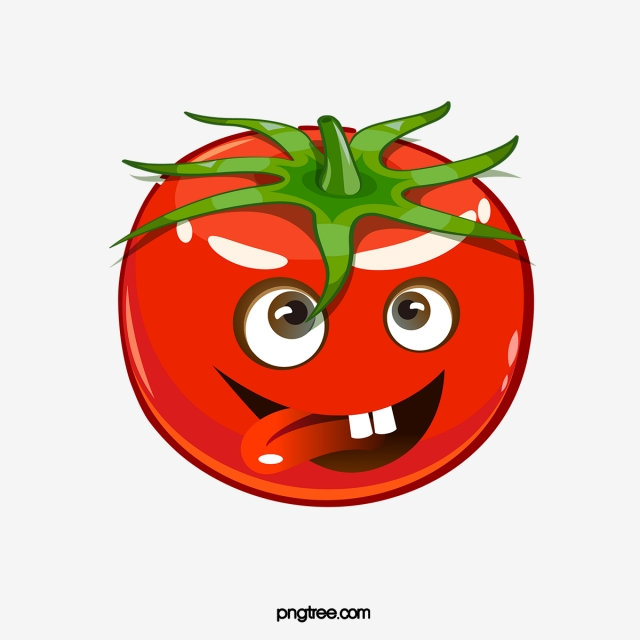 tomatoes clipart red tomato