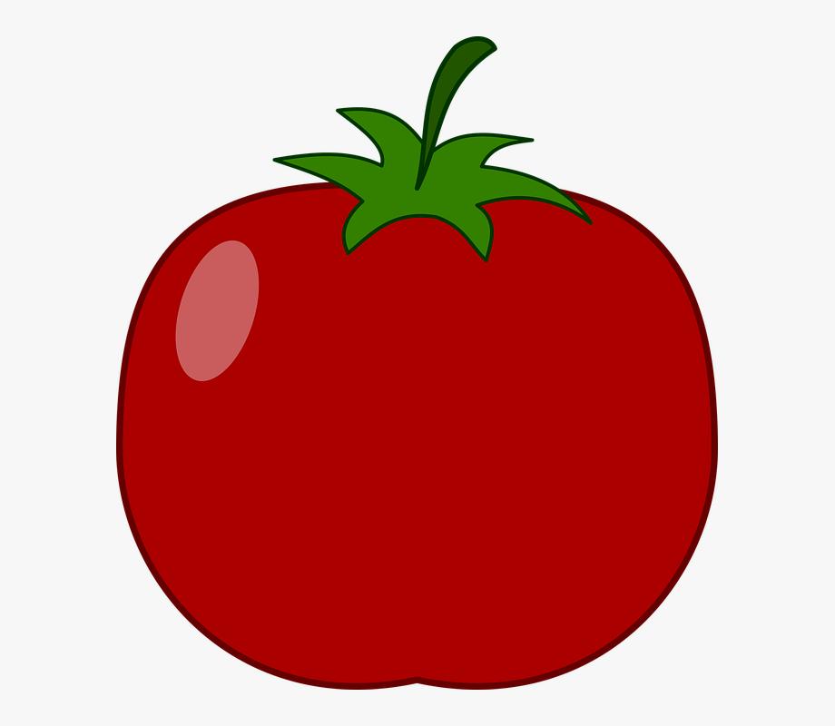 Tomatoes clipart round fruit. Illustration food icon tomato