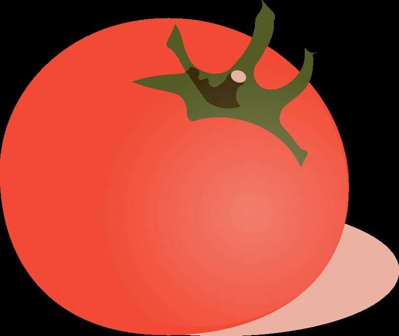 Tomato medium image png. Tomatoes clipart round fruit