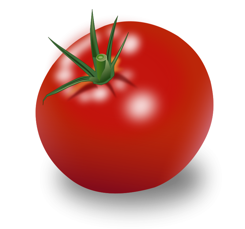 Tomatoes clipart tomato crop. Aztec empire meal on