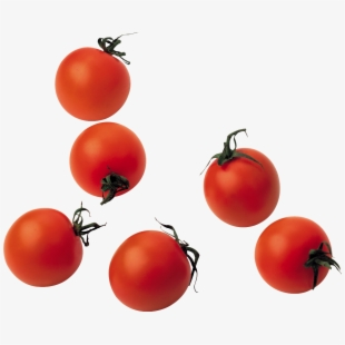 Tomatoes clipart tomato crop. Png cliparts cartoons free