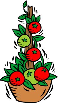 Plants facts for kids. Tomatoes clipart tomato crop