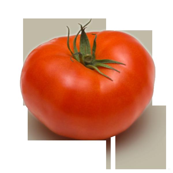 Cpcbio. Tomatoes clipart tomato crop