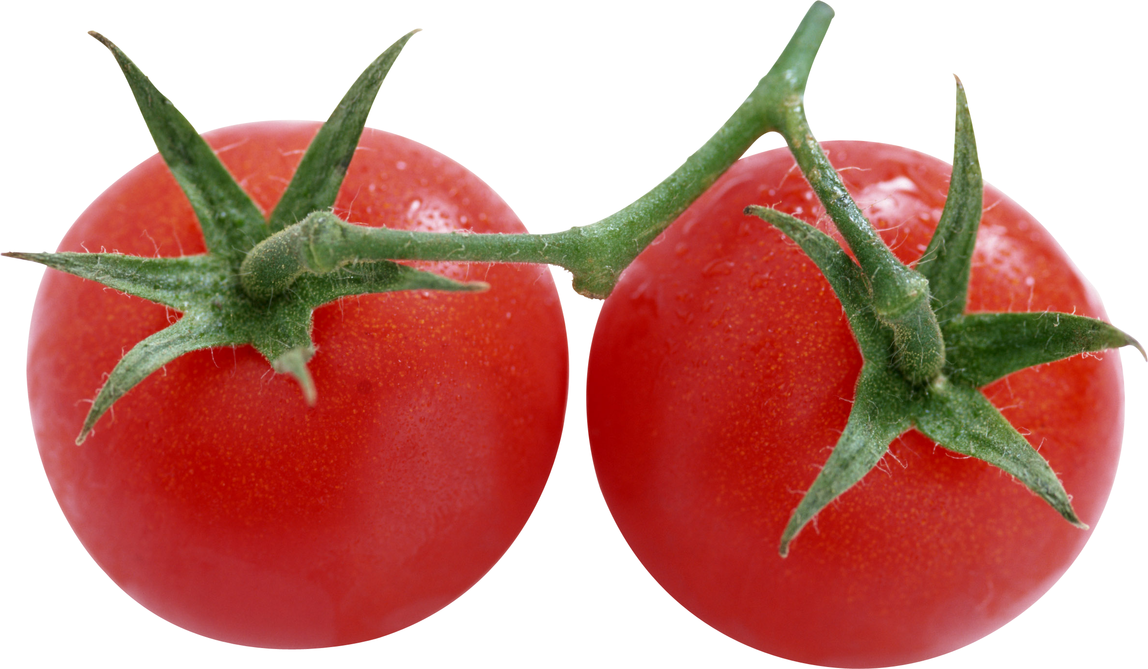 Tomatoes clipart tomato fruit. Red png image purepng
