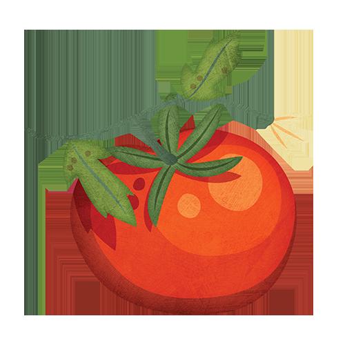 Little . Tomatoes clipart tomato garden