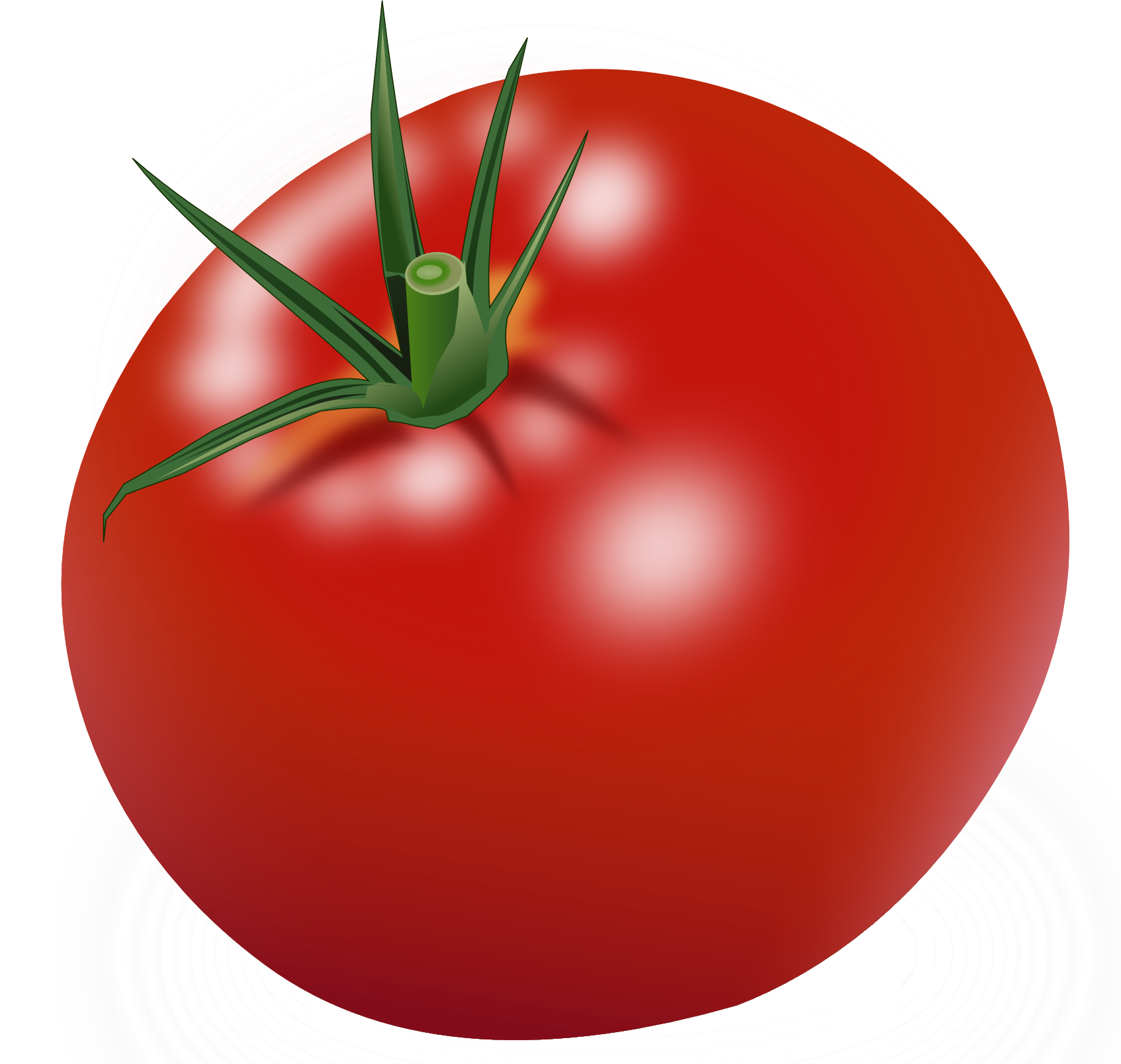 Png image transparent best. Tomatoes clipart tomato leaf