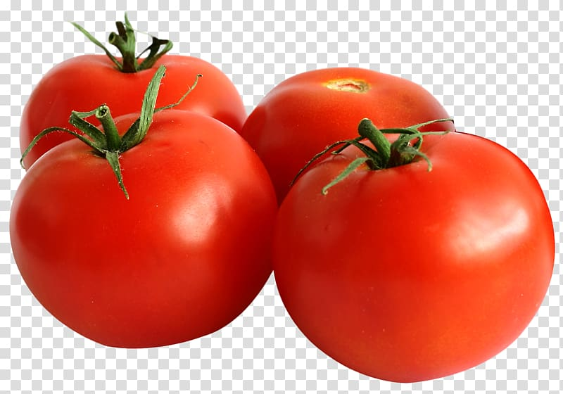 Four red cherry vegetable. Tomatoes clipart tomato seed