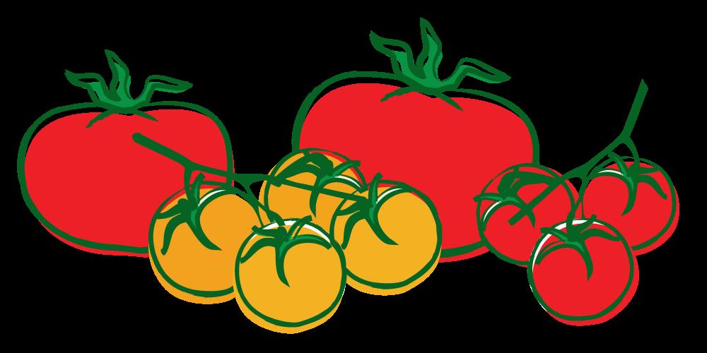 Tomatoes clipart tomato seed. Home farmer garden kits