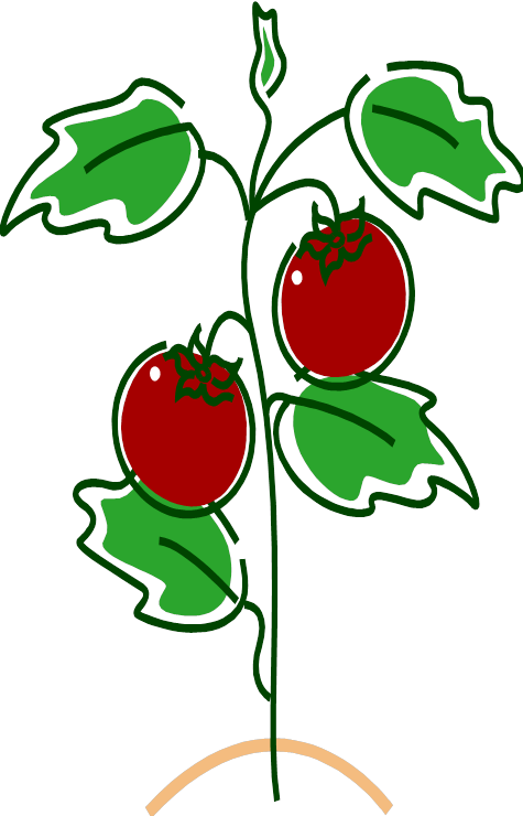 Tomatoes clipart tomato stem. Robotics news girl scouts
