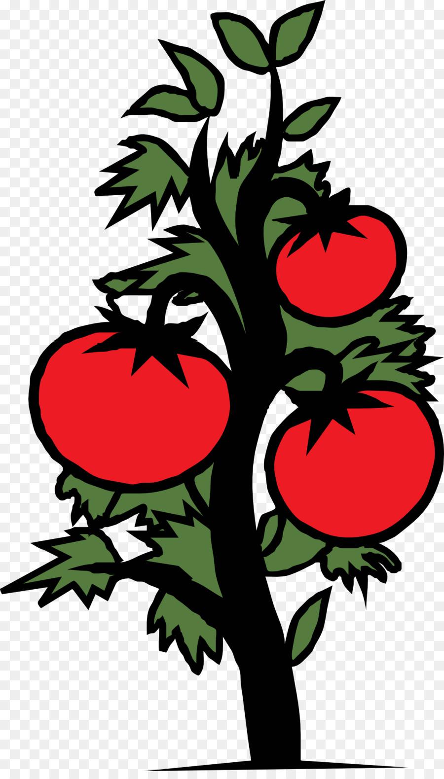 tomatoes clipart tomato stem