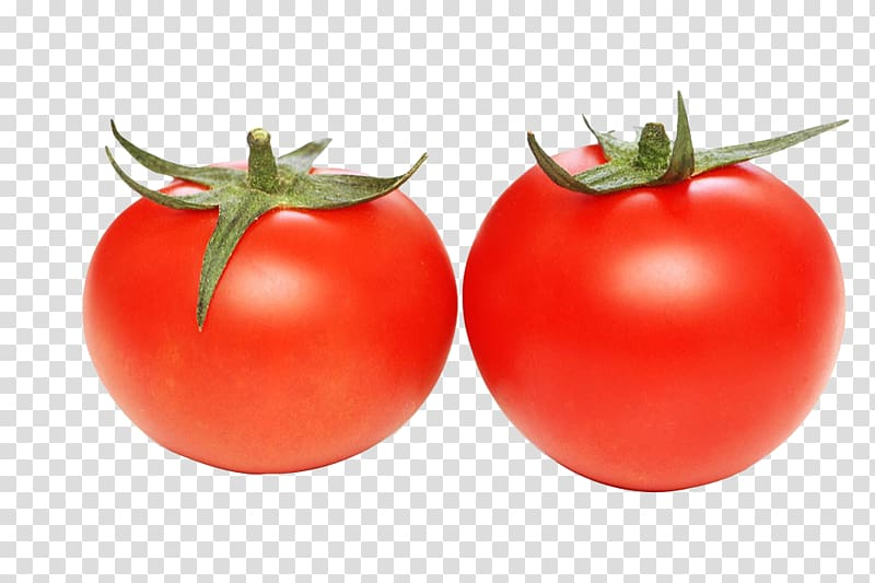 Tomatoes clipart two. Tomato juice cherry transparent