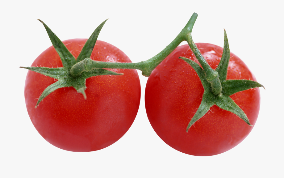 Tomato rotten png transparent. Tomatoes clipart two