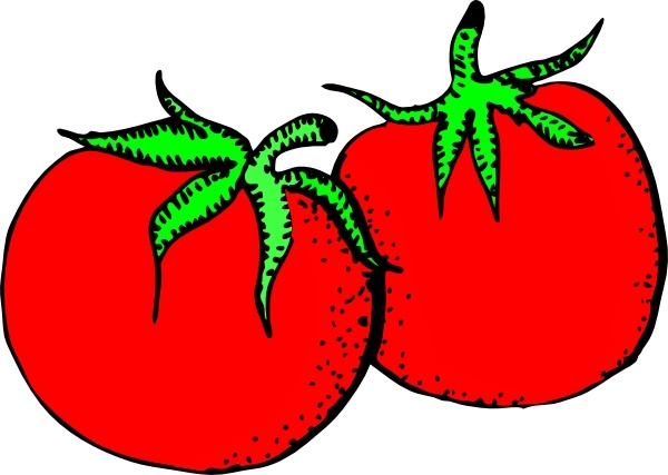 Clip art free vector. Tomatoes clipart