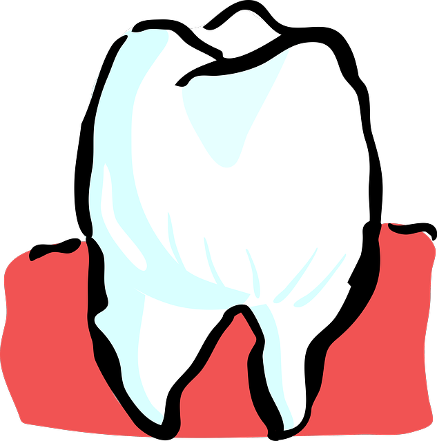 Are your teeth toxic. Tooth clipart calcium