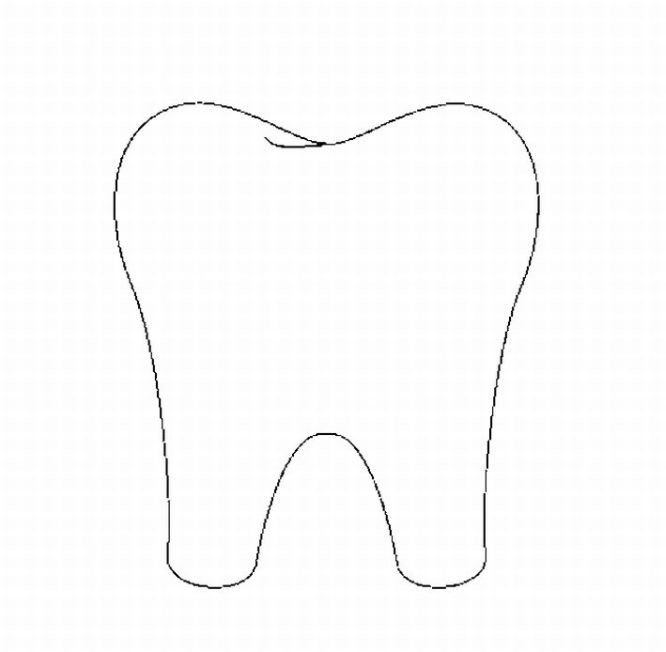 - Tooth Clipart Printable, Tooth Printable Transparent FREE For Download On  WebStockReview 2020