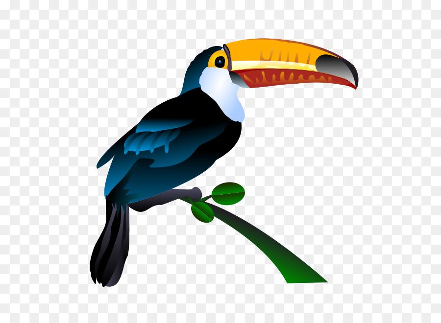 Bird clip art png. Toucan clipart