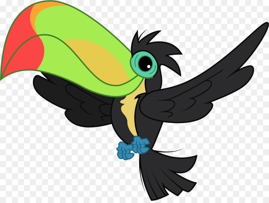 Toucan clipart. Parrot bird clip art