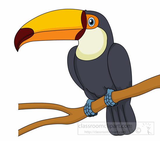 Search results for clip. Toucan clipart